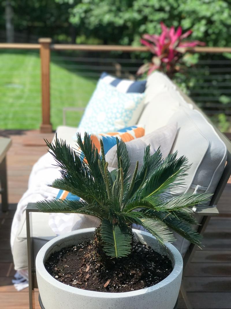 Deck Planter Flower Ideas Jpg The Greenspring Home